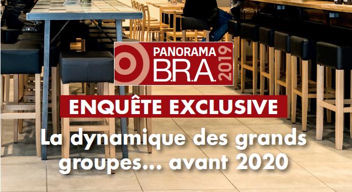 Le Panorama B.R.A. 2019 est publié !